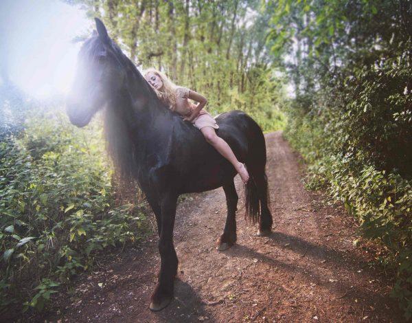 dream-horse